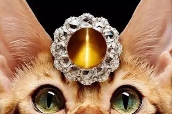 猫眼石的真假对比照,真假猫眼石图解