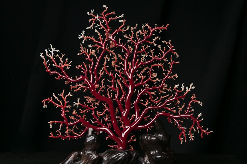 红珊瑚-玉雕名家
