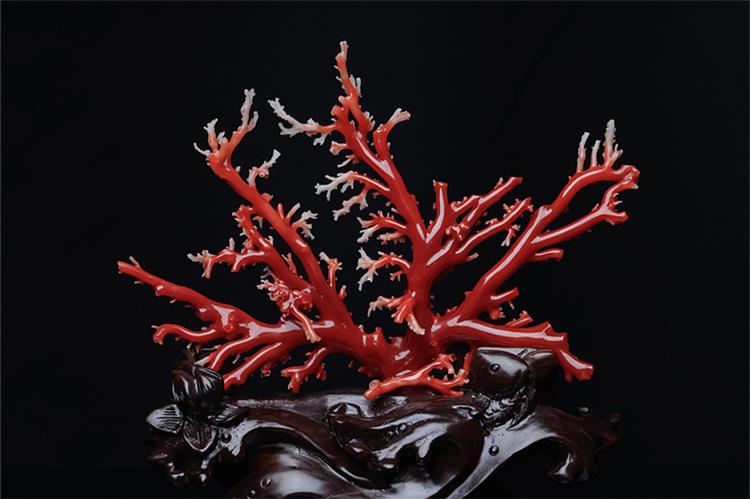 红珊瑚真假-玉雕名家