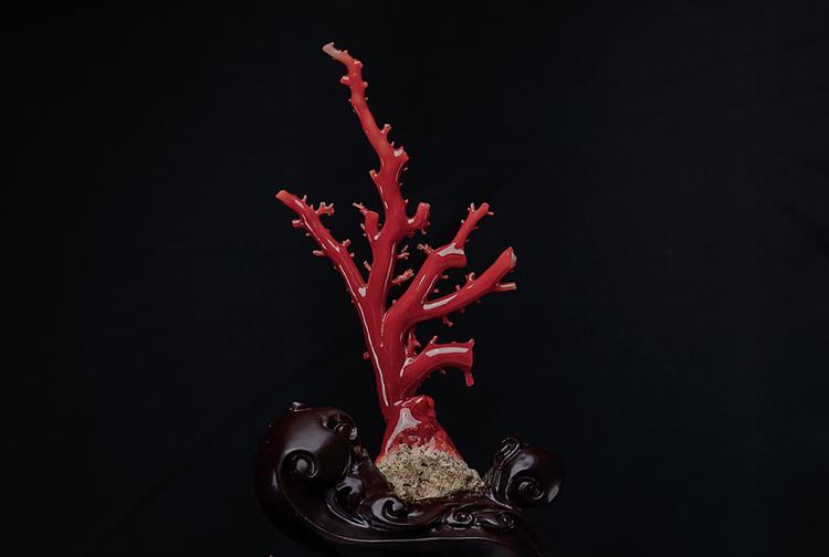 红珊瑚原枝-玉雕名家