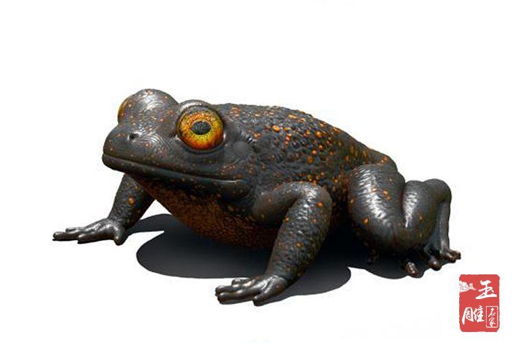 琥珀蛙-玉雕名家