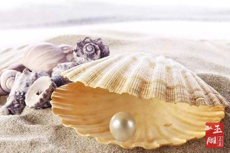 珍珠养殖-玉雕名家