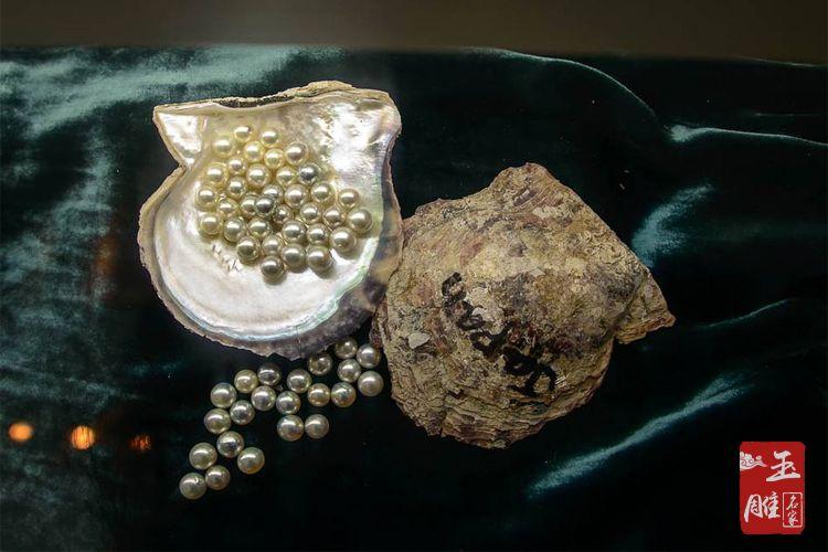 珍珠养殖技术-玉雕名家