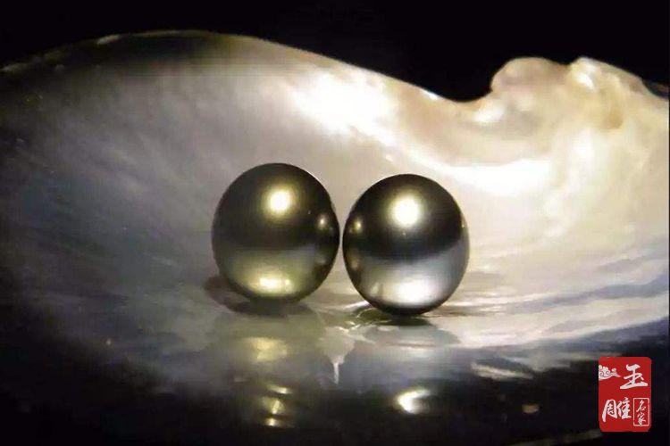 珍珠怎么养殖-玉雕名家