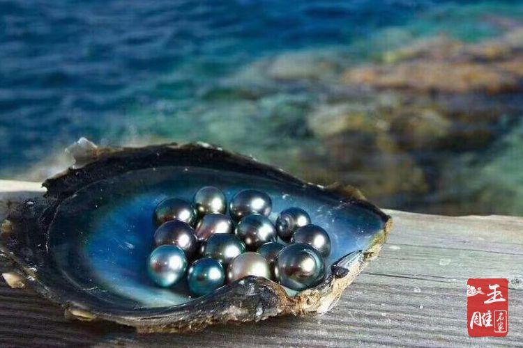 大溪地黑珍珠价格-玉雕名家