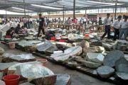 国内的翡翠原石批发市场在哪里?购买原石一定要去缅甸吗?